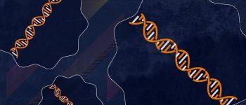 پیشگیری از پیری با درمان چین و چروک سلول ها